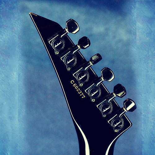 Charvel Model 5 headstock back