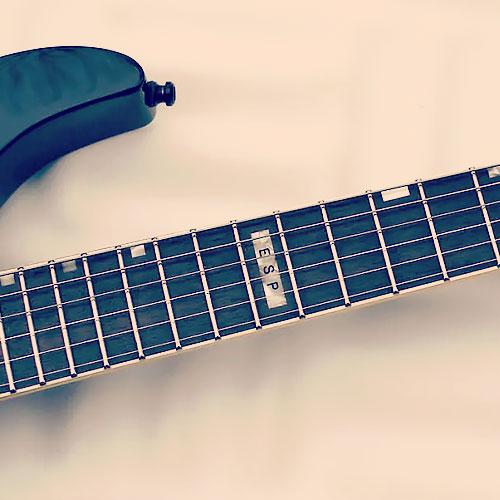 ESP M-1 Custom