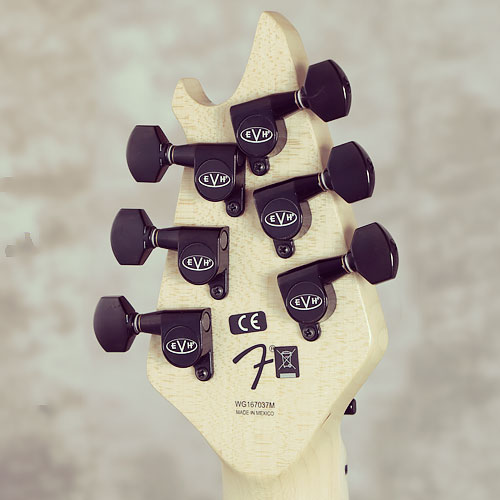 EVH Wolfgang Special T.O.M.