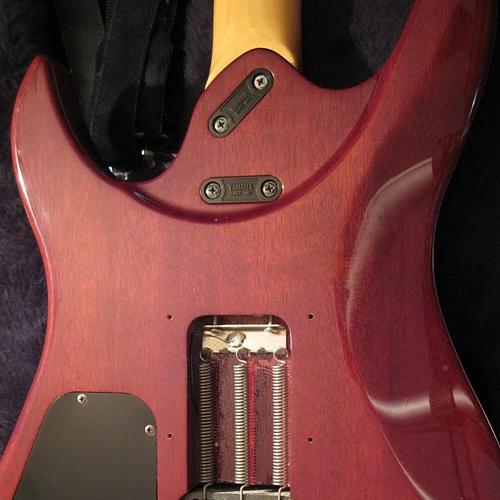 Yamaha RGZ Standard