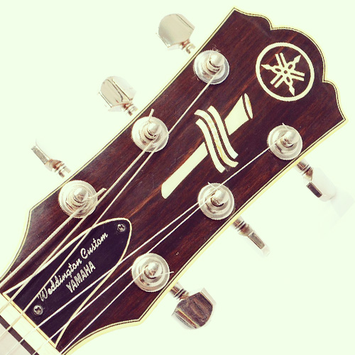 Yamaha Weddington Custom headstock