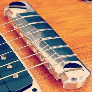 PRS Stoptail Bridge